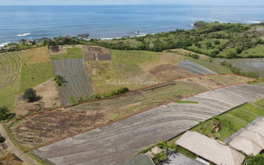 Freehold-land-in-Tabanan-with-Ocean-view-Bali-Luxury-Estate-12